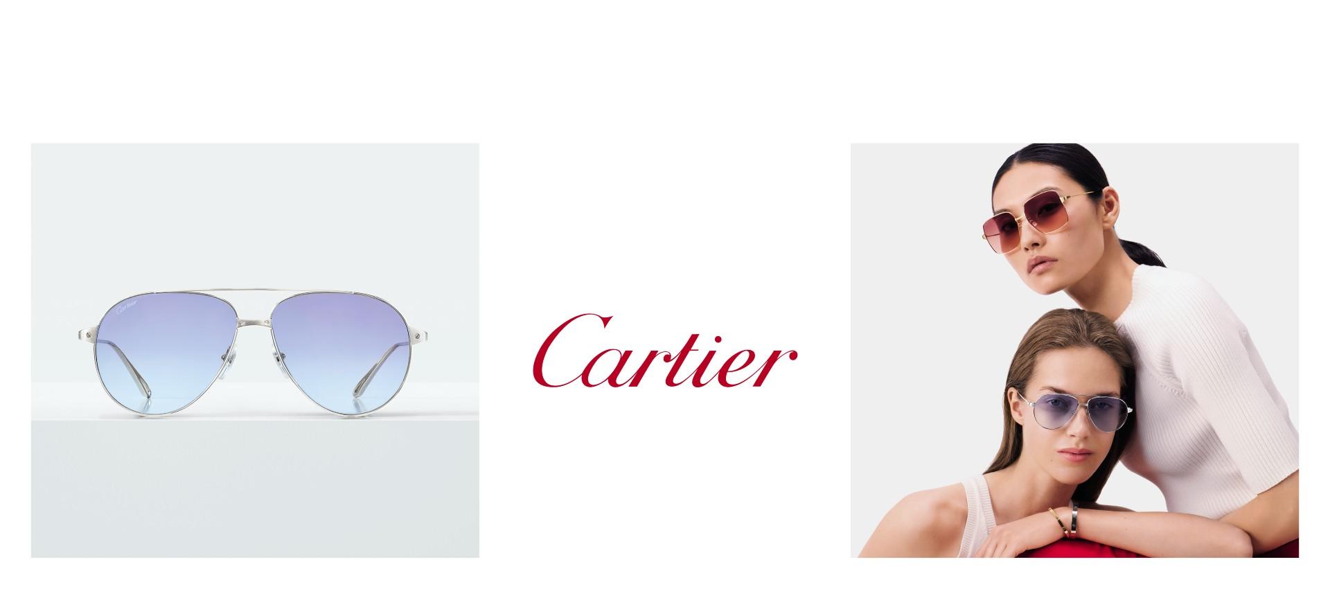 CARTIER_2Banner_021